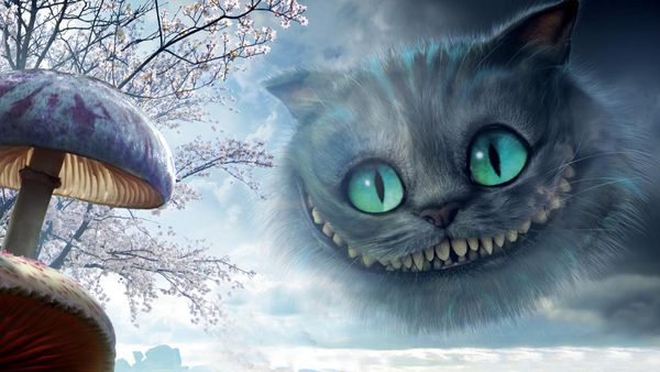 500 word essay on the cheshire cat How it works